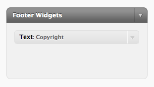 Screenshot of widgetized footer sidebar displayed in the WP Admin Area