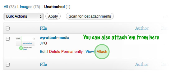 Attach Unattached Media Files - Step 2: Click the 'Attach' button