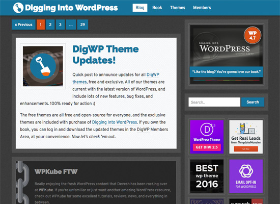 DigWP Theme Version 4